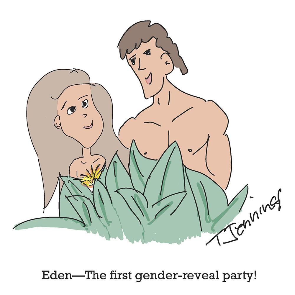 Reasonettes:  First Gender Reveal